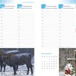 12-12 BENKOWSKI PUBLISHING & BALLOONS Podlasie najpiekniejsze