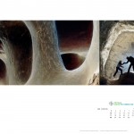 10. BAYER sp. z o.o., GRAND PRIX, nagrodzone, wieloplanszowy, Vidical 2013