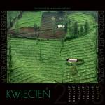 9b. ARW PAN DRAGON, wieloplanszowy, Vidical 2013