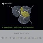 1. AD.VISER Katarzyna Bruździńska - Wójcik, wieloplanszowy, Vidical 2013