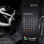 36a. OLMET Sp. z o.o., wieloplanszowy, Vidical 2013